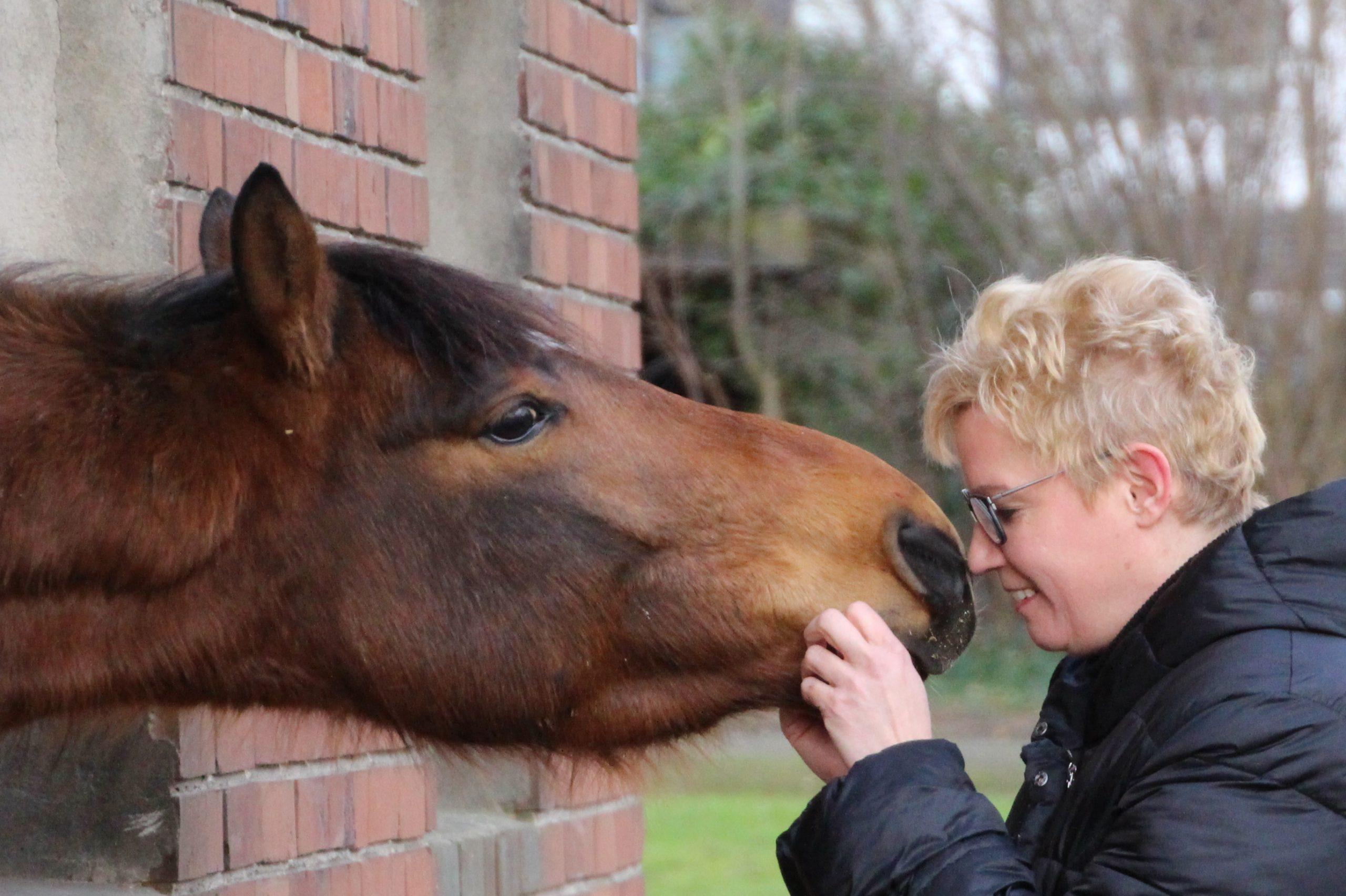 Tierkommunikation: Nicole im Kontakt mit einem Pferd