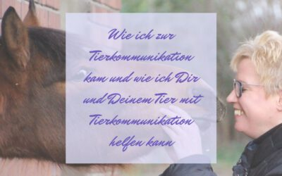Wie ich zur Tierkommunikation kam und wie ich Dir und Deinem Tier mit Tierkommunikation helfen kann