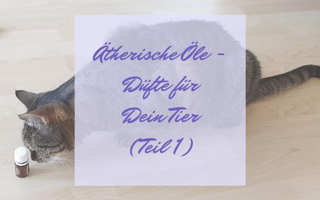 Ätherische Öle – Düfte für Dein Tier (Teil 1)