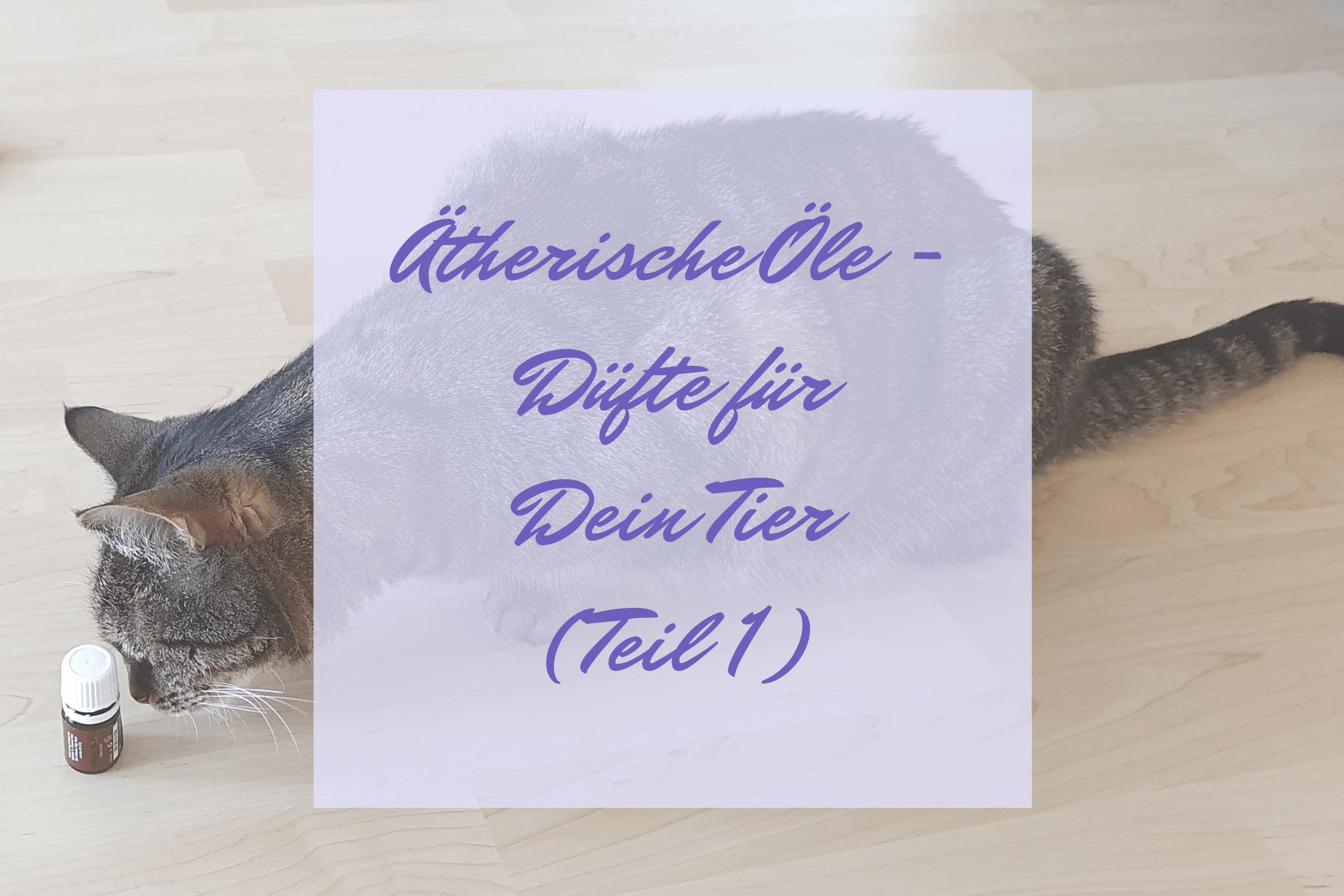 Ätherische Öle - Düfte für Dein Tier - Teil 1